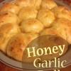 Honey Garlic Rolls