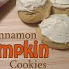 Cinnamon Pumpkin Cookies
