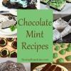 10+ Chocolate Mint Recipes
