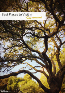 Best Places to Visit in Savannah