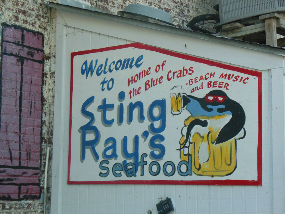 Sting Ray's
