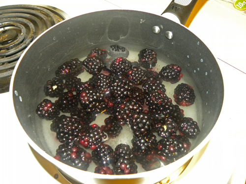Boil berries and sugar