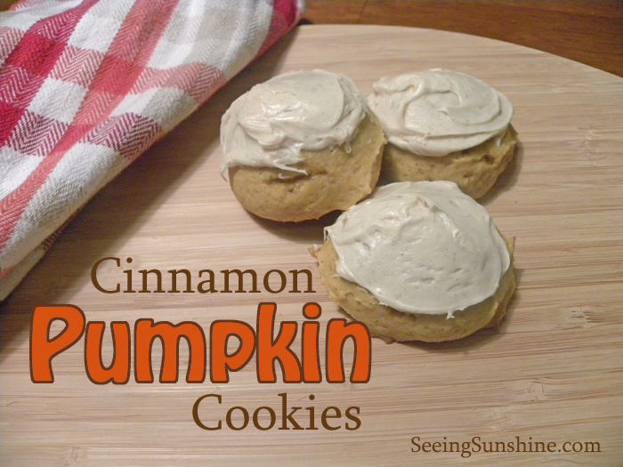 Cinnamon Pumpkin Cookies