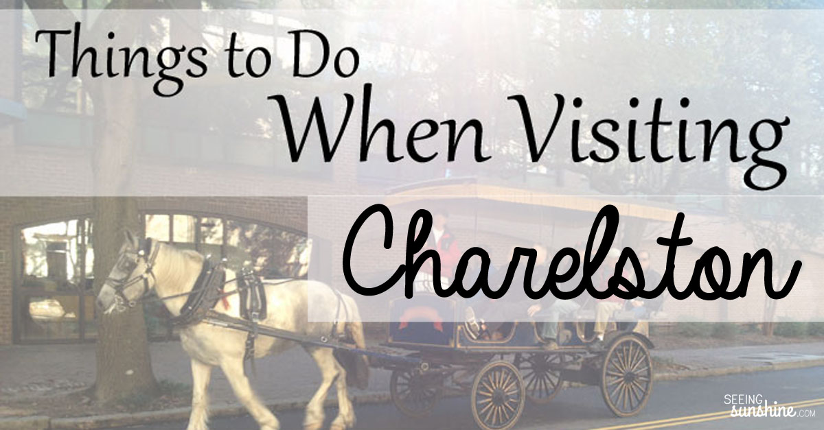 Things to do when visiting charleston seeing sunshine for Things to do charleston south carolina