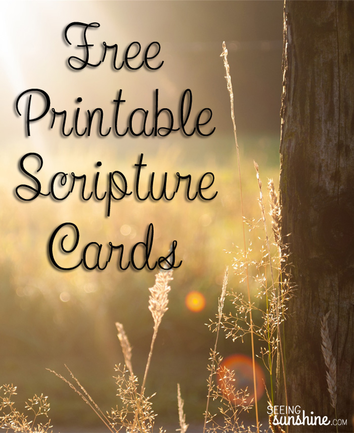 picture regarding Free Printable Scripture Cards called Free of charge Printable Scripture Playing cards - Observing Sunlight