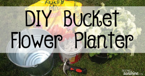 DIY Bucket Planter