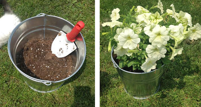 Flowers in Bucket DIY