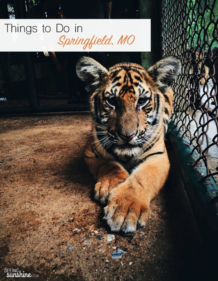 Check out this huge list of fun things to do in Springfield, Missouri -- including two ways to see tigers up close!