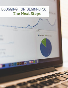 Blogging for Beginners: The Next Steps